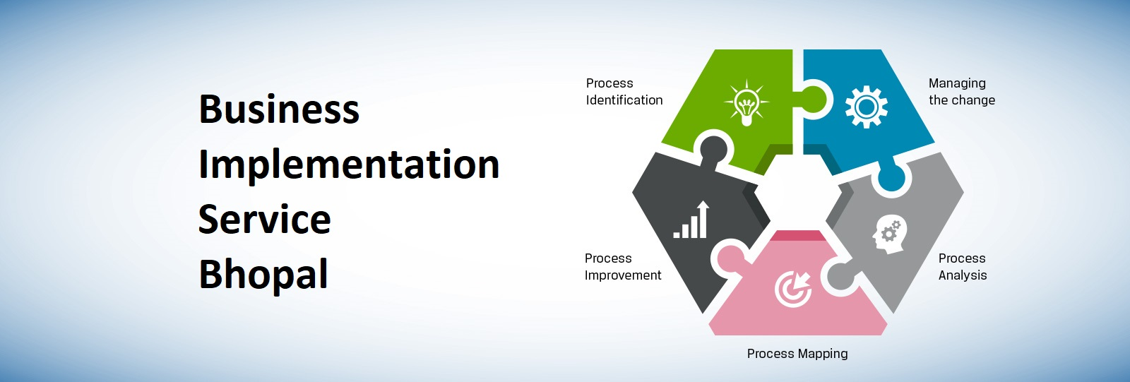 Business Implementation service bhopal