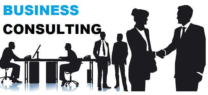 Business Consultant Bhopal - Mastery Infotech - Consulting Services